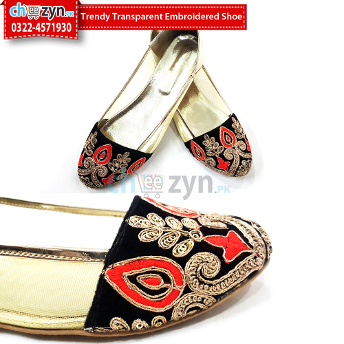 Trendy Transparent Embroidered Shoe