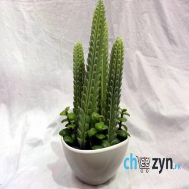 Artificial Cactus Plant Pot