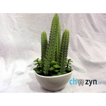 Artificial Cactus Plant Pot