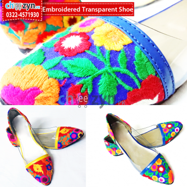 Embroidered Transparent Shoe